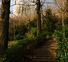 Chemin du Rosaire, Jardin du Rosaire, Lyon, France  by Andrew Jones