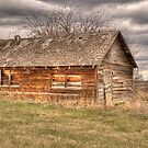 This Old Farm Building by Keri Harrish