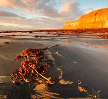 Huntsman Cliff, Saltburn-by-the Sea, Cleveland by James Paul