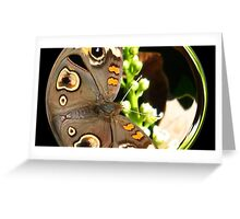 WeatherDon2.com Art 31 Greeting Card