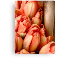 Floral Love Story . (5). by Brown Sugar. Views (61) favs (4) .  Featured in All Glorious Lilies. thx! Canvas Print