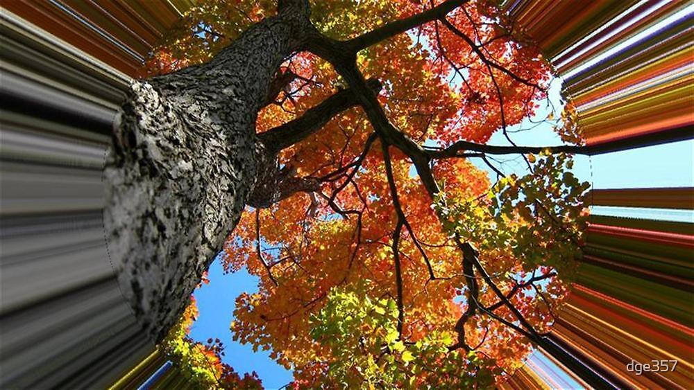 WeatherDon2.com Art 63 by dge357