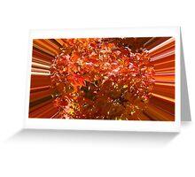 WeatherDon2.com Art 70 Greeting Card