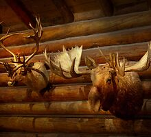 Taxidermy - The hunting lodge  by Mike  Savad