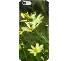 Wild Yellow - iPhone Case iPhone Case/Skin