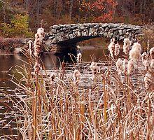 The Stone Bridge at Hopedale Pond  by John  Kapusta