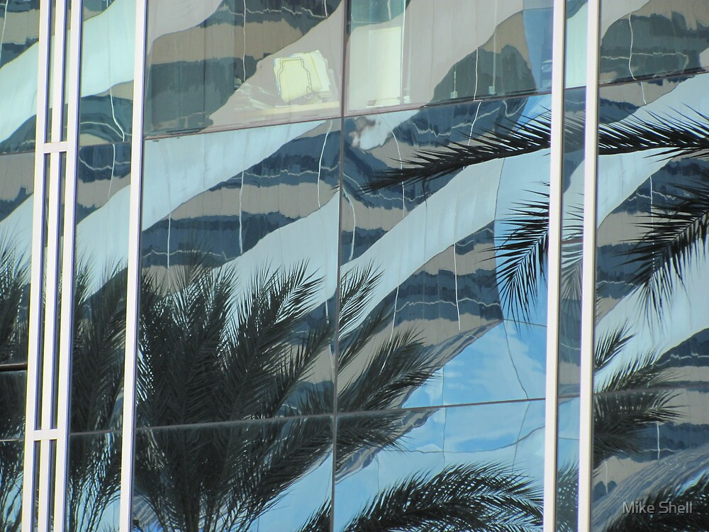 Palms in windows by Mike Shell