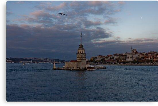 Maiden's Tower, Istanbul, Turkey  by Tanergungor