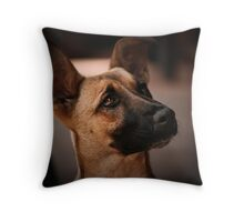 Want some more .. Throw Pillow