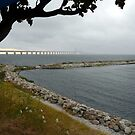 The Bridge by HELUA