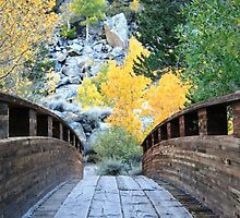 Footbridge to the Sierra Nevada by Debra Ann Pflieger
