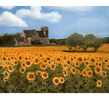 French Countryside - Sunflowers Photographic Print