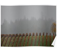 Rolling Pinot Noir Vines in Autumn  Poster