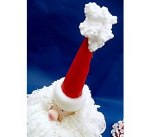 Are you ready for Santa? Photographic Print