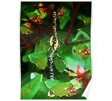 Alien Garden Spider Poster