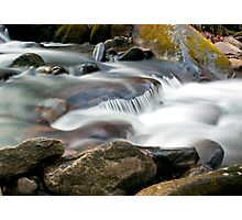 Roaring Fork Motor Nature Trail Cascade Photographic Print