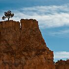 High Life - Bryce Canyon by thejourneysofar