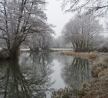River Wey by James Deeley