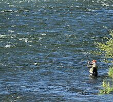 Fly Fishing On The Deschutes River  by Don Siebel
