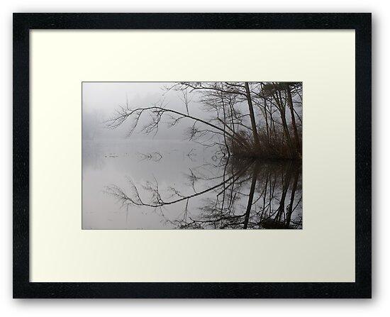 Misty Reflection by Jean-Pierre Ducondi