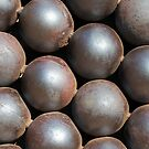 cannon balls by shakey