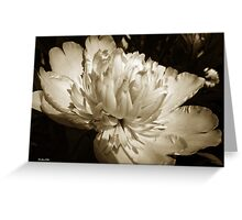 Sepia Peony Flower Art Greeting Card