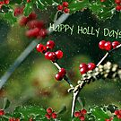 Happy Holly Days! by deb cole