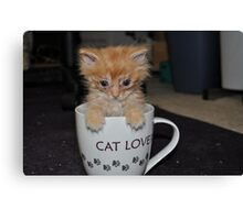 CAT LOVER! Canvas Print