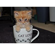 CAT LOVER! Photographic Print