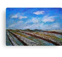The Fields in the November Morning Canvas Print