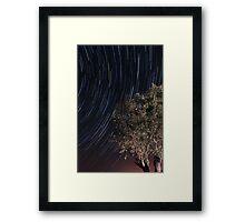 Startrails over an olive tree Framed Print