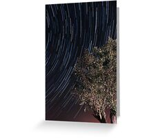 Startrails over an olive tree Greeting Card