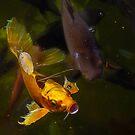 GOLDEN FISH by LudaNayvelt