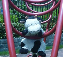 Moo Moo Hanging Out by Joseph Green