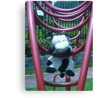 Moo Moo Hanging Out Canvas Print