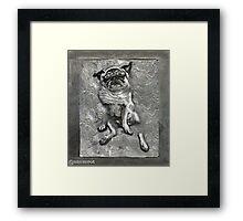 Pug in Carbonite Framed Print