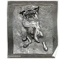 Pug in Carbonite Poster
