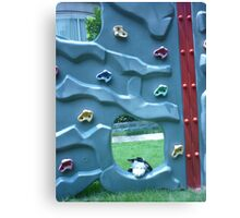 Moo Moo going for a climb. Canvas Print