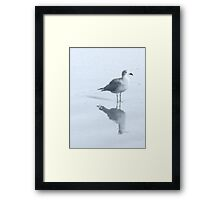 Gull and Reflections, Blue Tint Framed Print