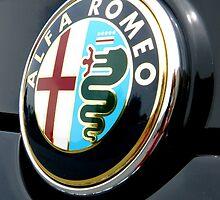 Alfa Romeo by winterland