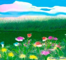 Field of Flowers by Carol Rudd
