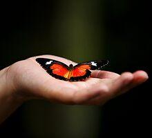 Butterfly Kisses  by BongShei