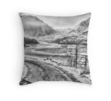 Snowy Fraser River Throw Pillow