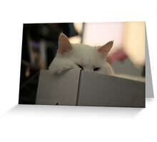 Can You See Me? Greeting Card