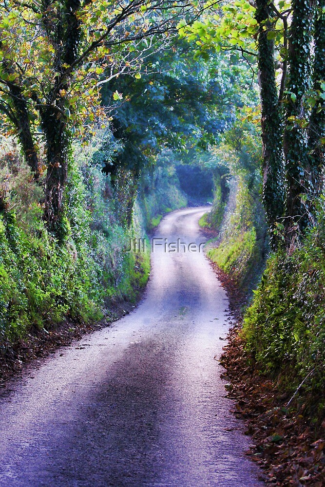 Winding Country Lane by Jill Fisher