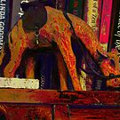 A camel&#x27;s journey across the bookshelf by Paul Todd