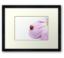 I am just a simple lady... Framed Print