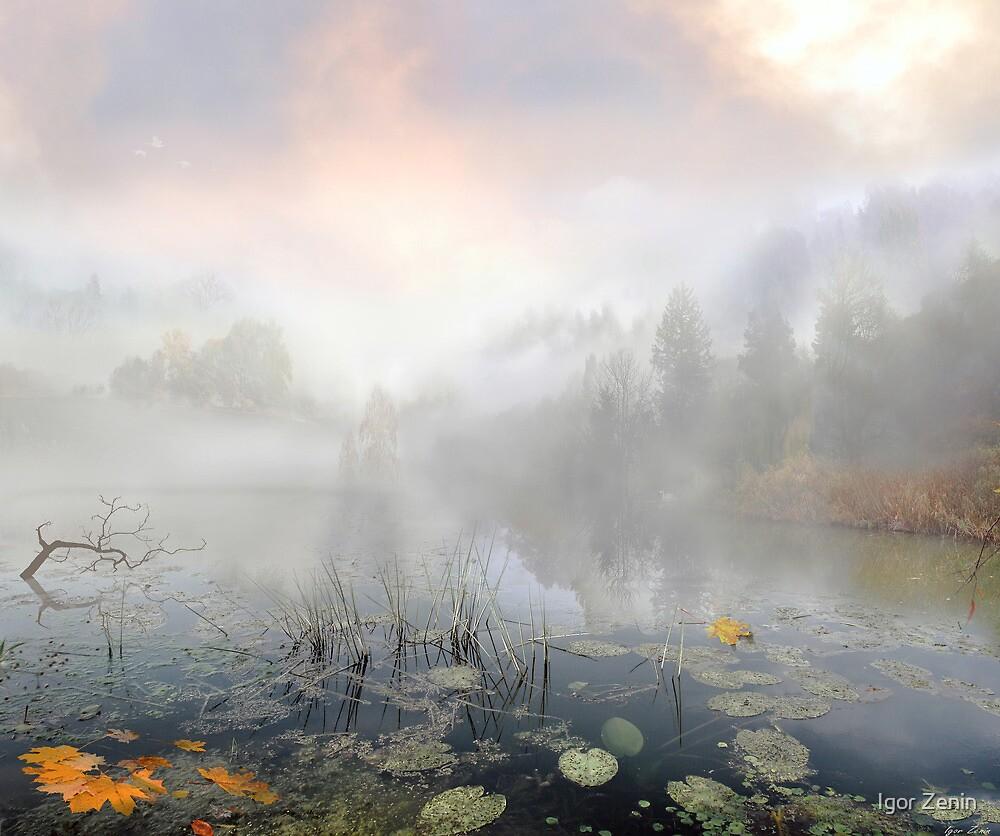 Autumn Morning by Igor Zenin