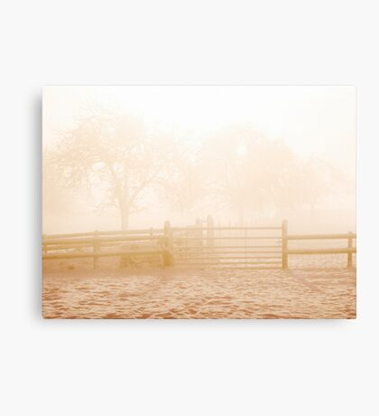 Winter orchard Canvas Print