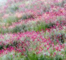 Dreamy Flower Field 10 by Carolyn  Fletcher